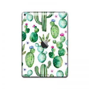 Dainty Cactus